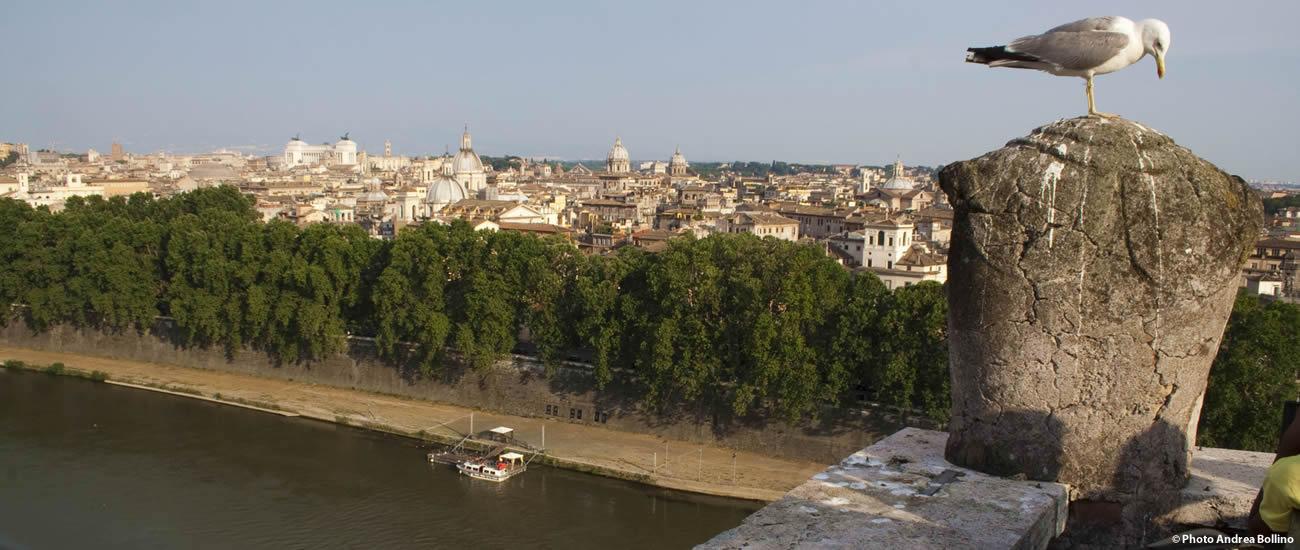 Roma vista da Castel Sant'Angelo